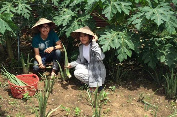 Bỏ cơ hội ở Singapore, cô gái Việt về Sài Gòn bán nước mát