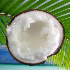 Dừa sáp hơn 200.000 đồng một trái vẫn cháy hàng