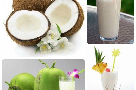 Dừa sáp Trà Vinh muốn ngon phải ăn đúng cách