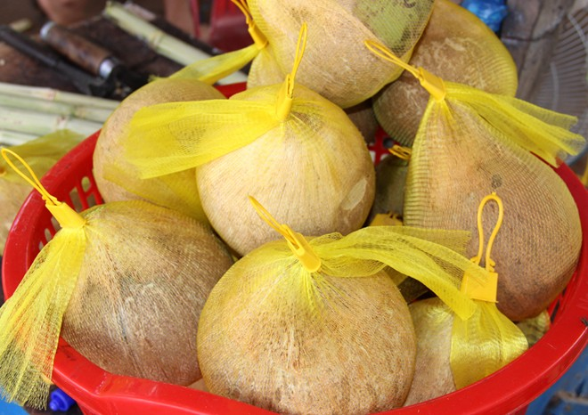 Giao Hàng Dừa Sáp Trà Vinh tại tpHCM