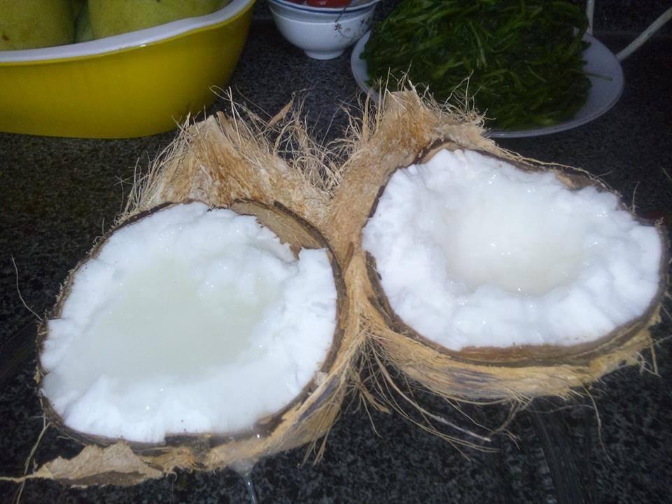 Mua Dừa Sáp Ở Đâu Chính Gốc Cầu Kè Trà Vinh