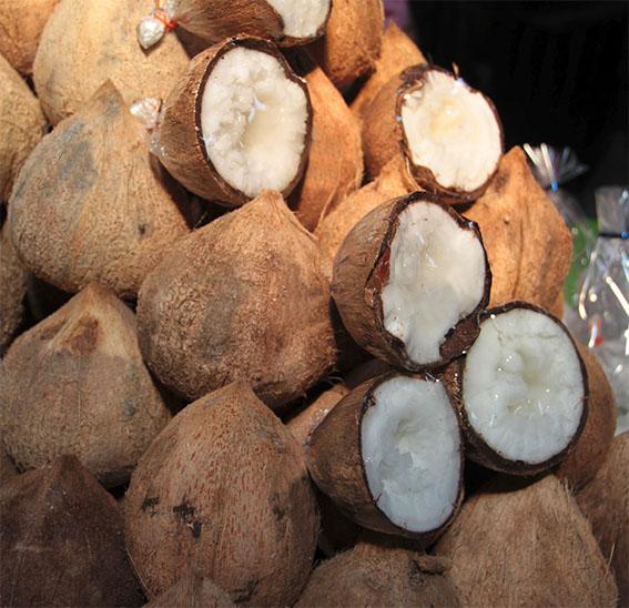 Bán Dừa Sáp Tại Quận Bình Thạnh